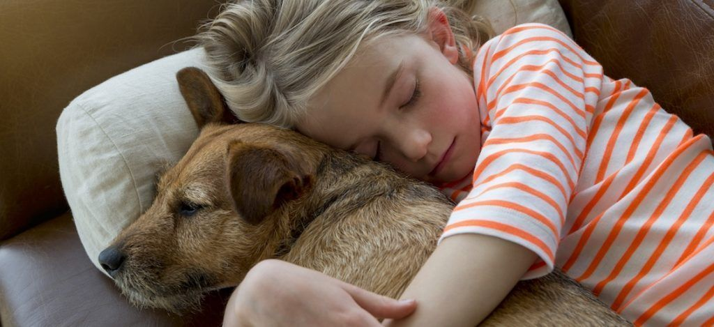Young girl cuddling her pet dog on a sofa at home. By DGLimages | Shutterstock.com