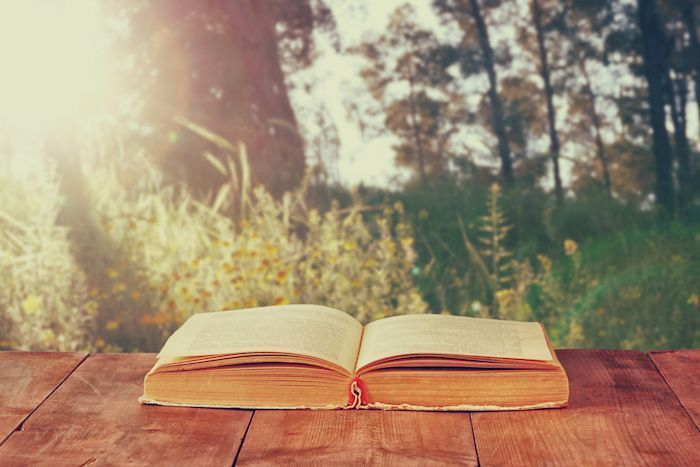 Open book over wooden rustic table in front of wild landscape and sunset light burst. By tomertu | Shutterstock.com