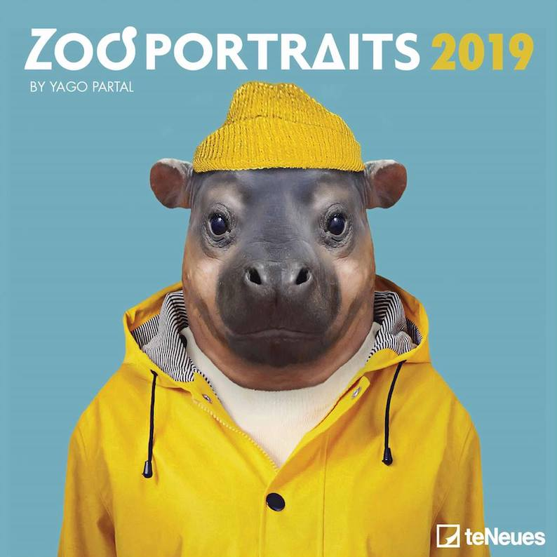 Zoo Portraits Calendar 2019 - teNeues